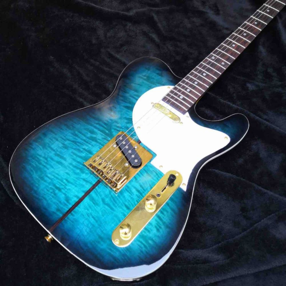 Custom Tuff Dog Tele Electric Guitar in Blue Color