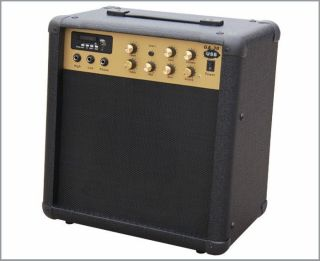 Guitar Amplifier Combo 30w with USB
